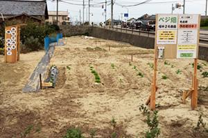 top_farm_sakai2